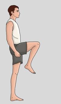 hip flexion in standing