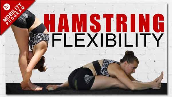 hamstring flexibility workout
